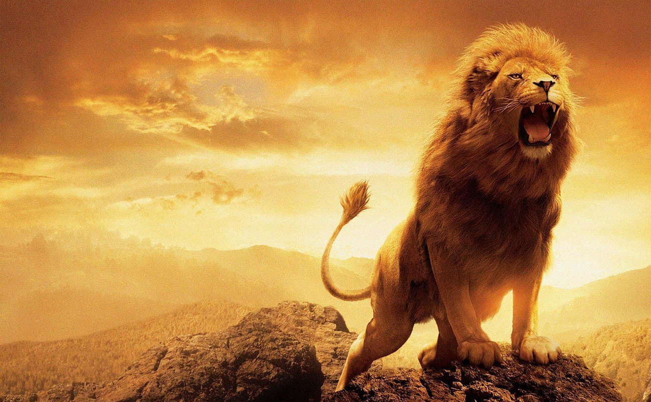 The Lion is loosed from the thicket ( bushes )